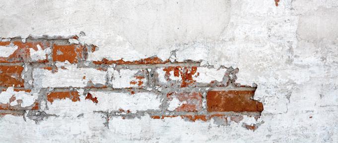 bricksesposed681